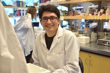 Meet a 2015 Vanier Canada Graduate  Scholarship Recipient – Farshad Babaeijandaghi