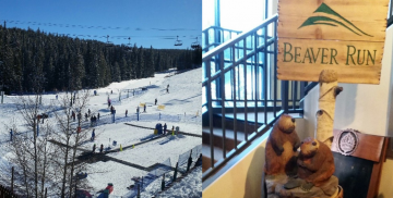 Keystone Symposia: Single Cell Biology, Breckenridge, Colorado