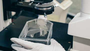 Stem Cell Therapies in the Canadian Market (Part 2): Strengthening Regulations & Moving Forward