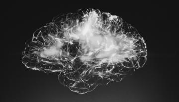 Cancer chemotherapy drug reverses Alzheimer's symptoms in mice